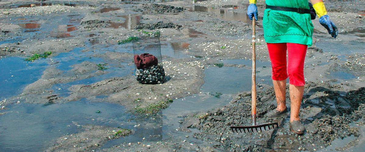 mariscadoras-raxo-combarro